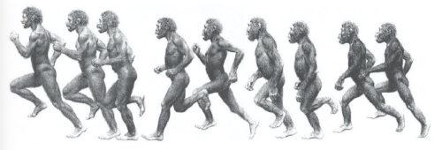Ape to Man running