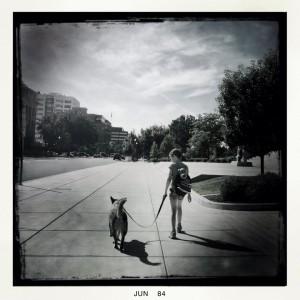 Dusty getting walked in Boise.