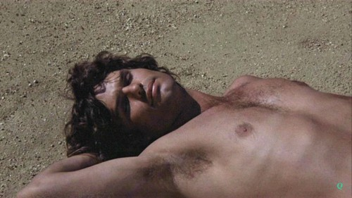 Harry Hamlin in Clash of the Titans