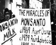 Monsanto-616x180
