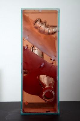Jennifer Sirey's Three Holes, glass, bacteria, water, vinegar, monofilament, 2011.