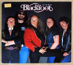Vinyl records collectors