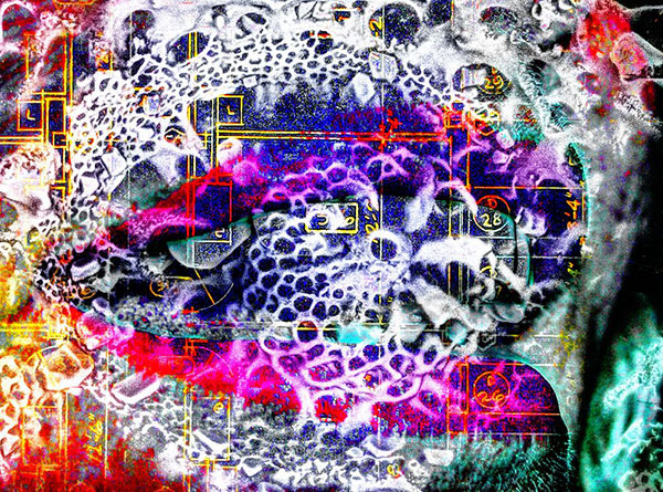 boon_2_3_Surreal-2WEB