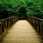 bridge-180x180