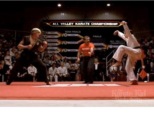 karate-kid-ralph-macchio-crane-kick-stance