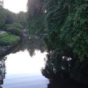 sean lake