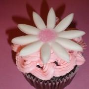 zen cupcake's pink cupcake